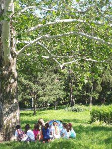 gradinita compania mica parcul circului sector 2 bucuresti parc