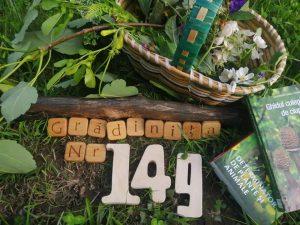 Gradinita 149 Sector 4 Natura